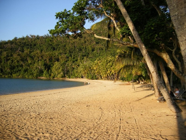 Dunk Island Restraunt: Dunk Island Travel Guide. Things To See And Do In Dunk